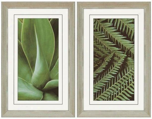 Natura I Wall Cunning - Set Of 2 - Set Of 2, Green
