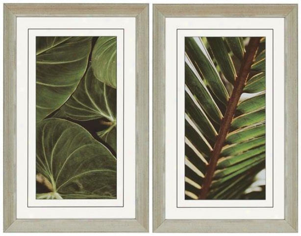 Natura Ii Wall Art - Set Of 2 - Set Of 2, Green