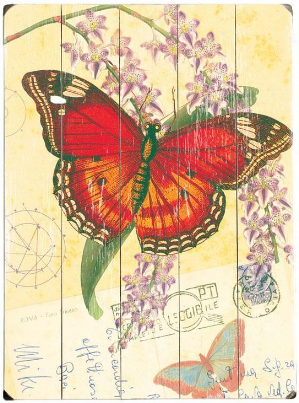 """natural Wonders - Butterfly Wooden Sign - 20""""hx14""""w, Red"""