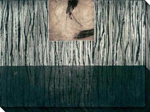 Nest Series Iv Canvas Wall Art - Iv, Black