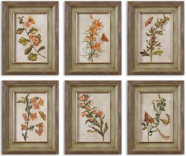 Orange Florals Wall Art - Set Of 6 - Set Of 6, Brown