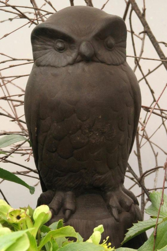 Owl Statue - 12hx6wx5d, Brown Wood