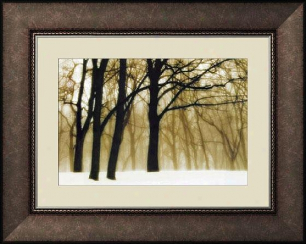 """past Dreams Framed Wall Art - 29""""hx37""""w, Trdnl Brl Wd Fm"""
