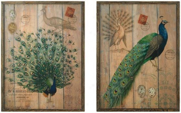 Peacock Wall Plaques Set Of 2 - Set Of 2, Brown