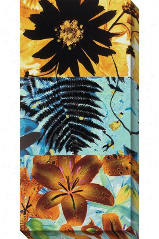 Petals And Leavse Ii Canvas Wall Art - Ii, Golden
