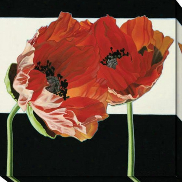 """poppies With Black And White Canvas Wall Art - 40""""hx40""""w, Black"""