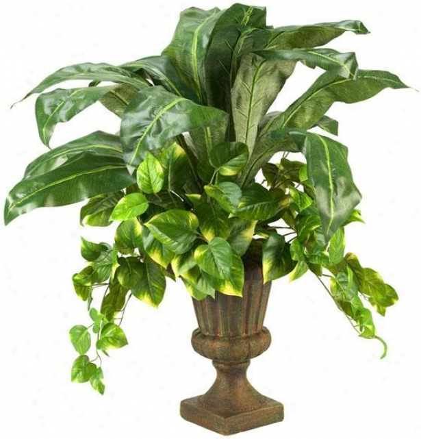 """pothos And Birdnest In Urn - 32""""hx20""""w, Green"""