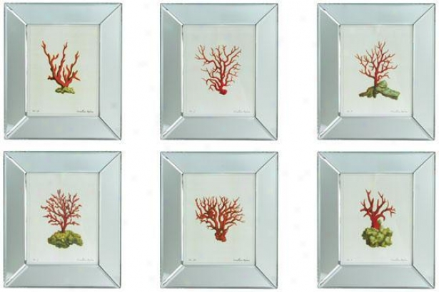 Reflections  Coral Wall Art - Set Of 6 - Set Of 6, White