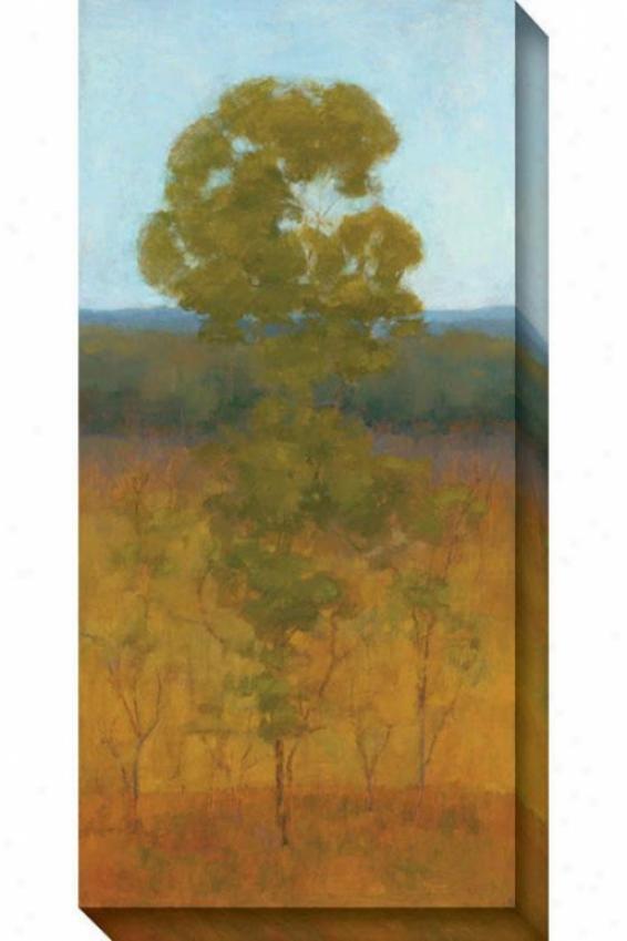 Solitary Tree I Canvas Wall Art - I, Inexperienced