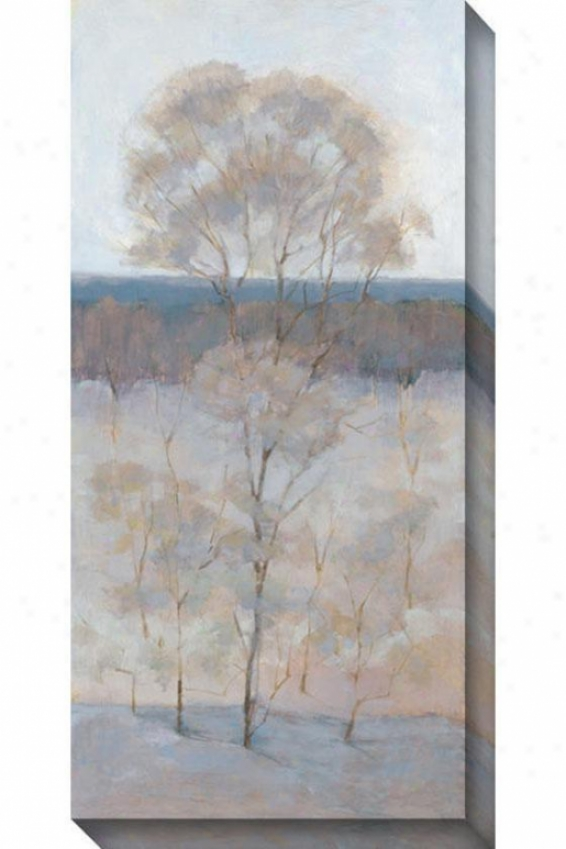 Solitary Tree Iv Canvas Wall Art - Iv, Gray