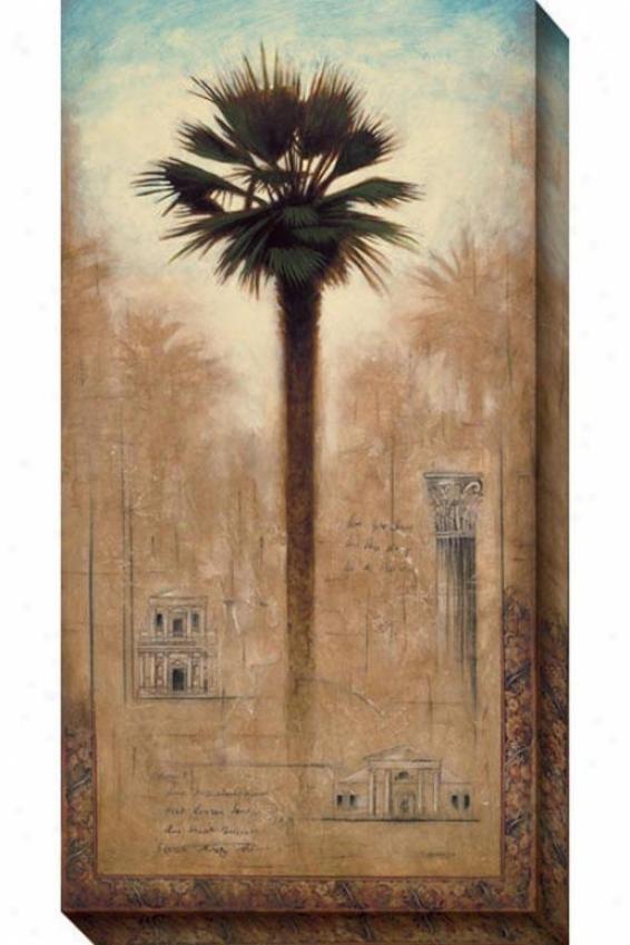 Spice Colony Ii Canvas Wall Art - Ii, Brown