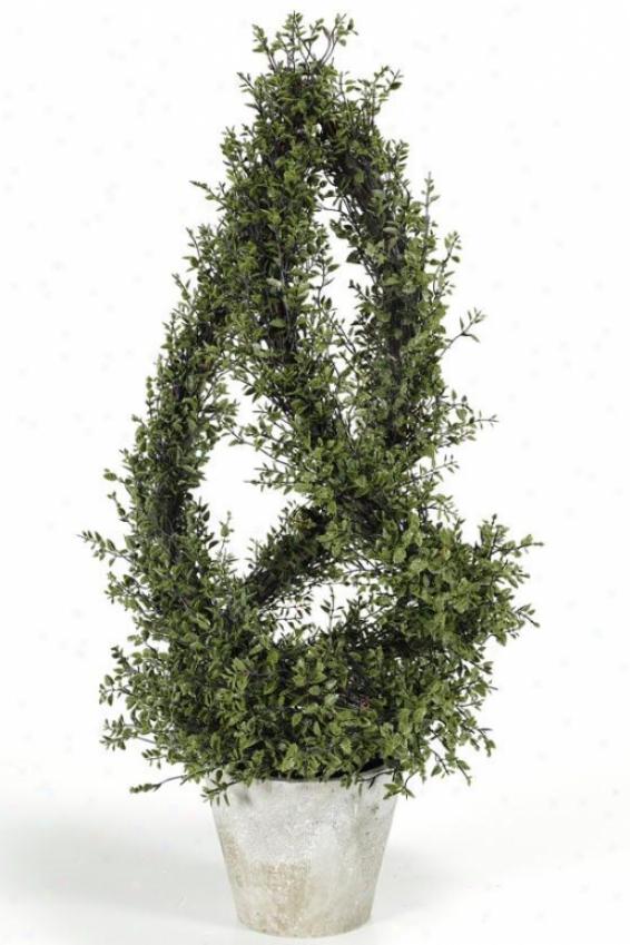 """spiral Basil Topiary - 27.5""""h, Green"""