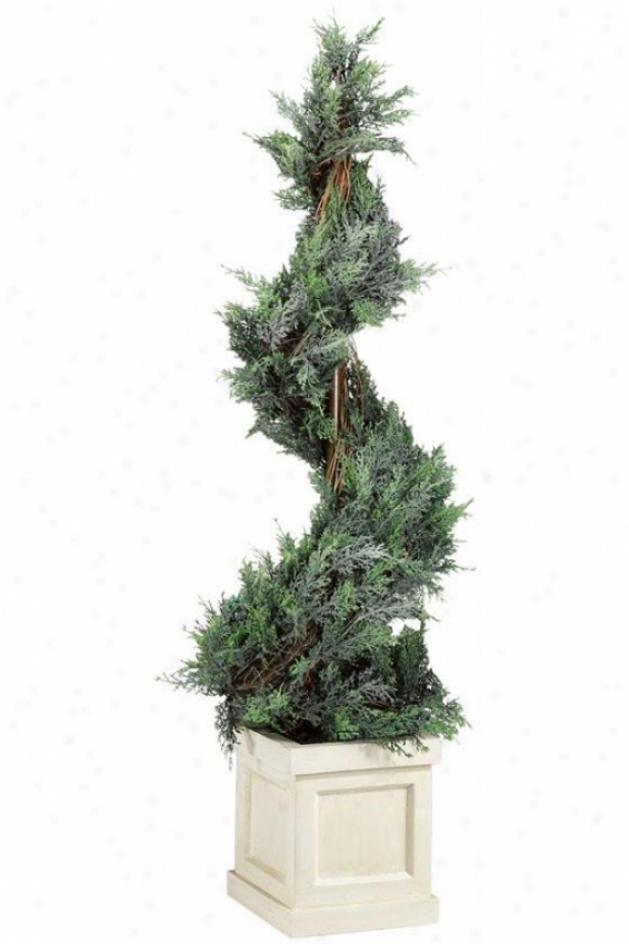 """""""spiral Topiary In Wooden Base - 46""""""""h, Ivory Base"""""""