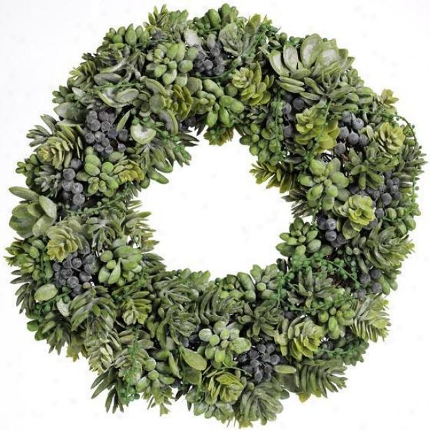 """""""succulent Wreath - 17""""""""d, Green"""""""