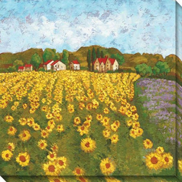 Sunflower Vista Ii Canvas Wall Art -I i, Yellow