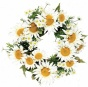 """daisy Wreath - 24""""d, White"""