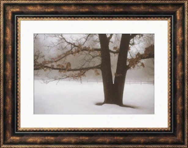 """""""tranquility Framed Wall Art - 28""""""""hx36""""""""w, Brown"""""""