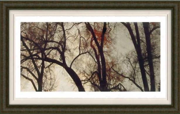 Transcendental I Wall Art - I, Fltd Burlwood