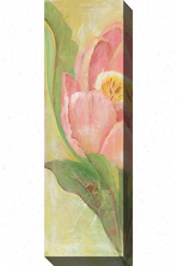 Tulip I Canvas Wall Art - I, Pink