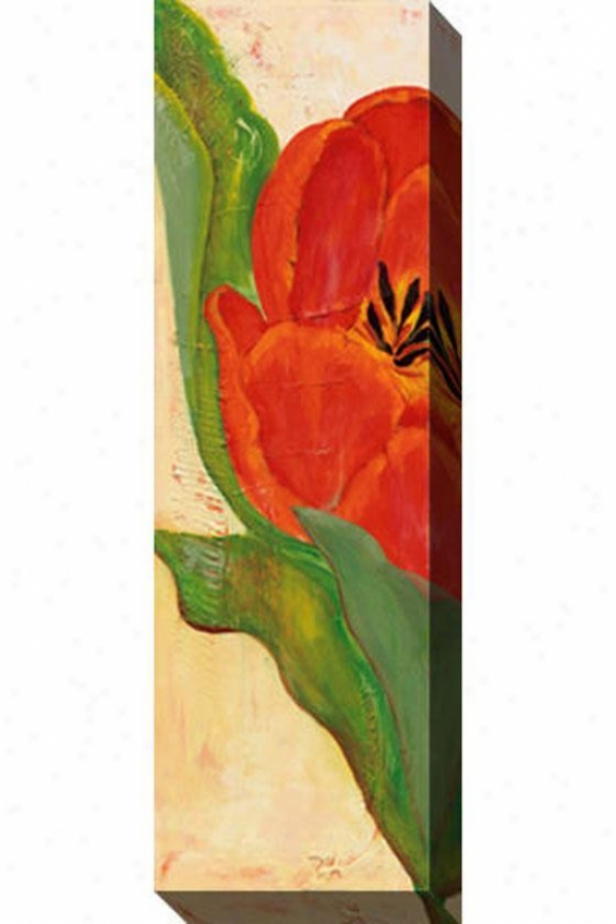 Tulip Ii Canvas Wall Art - Ii, Red