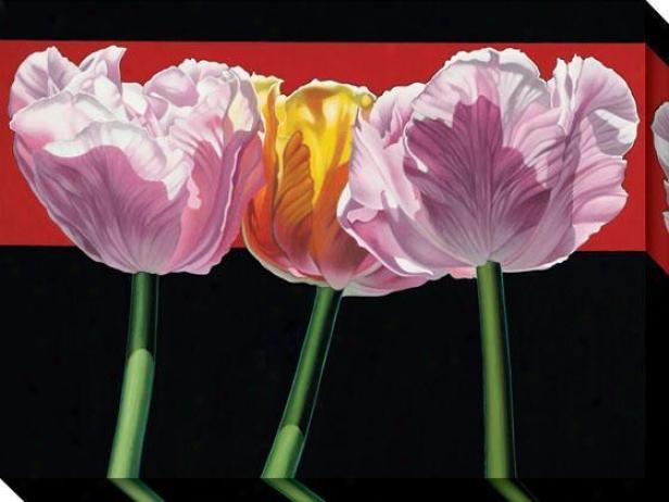"""tulips Canvas Wall Art - 36""""hx48""""w, Black"""