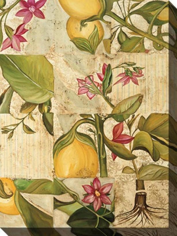 Verdure Ii Canvas Wall Art - Ii, White