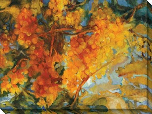 """vineyard And Vines Canvas Wall Art - 48""""hx36""""w, Orrange"""