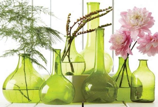 Vintage Decorative Bottles - Set Of 7 - Set Of Seven, Green