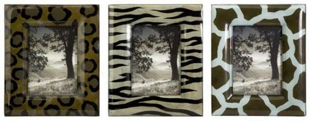 Wild Side Photo Frames - Set Of 3 - Set Of 3, Brown
