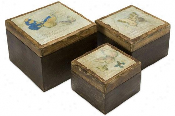 Worldly Butterfly Wood Boxes - Set Of 3 - Regular Of Three, Brown
