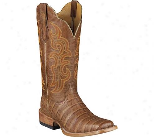 Ariat Latigo Belly Caima (women's) - Antique Brown Caiman/quartz Leather/gator