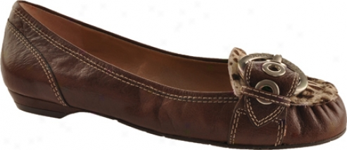 Bcbgeneratoin Dinia 2 (women's) - Chocolate/now Calcutta/leopard Pony
