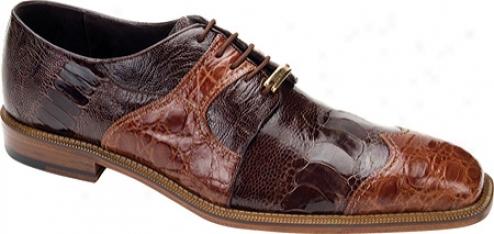 Belvedere Moscato (men's) - Brandy/brown Crocodile/ostrich