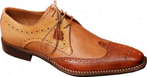 Giovanni Marquez 8946-tri Brown Leather (jen's)