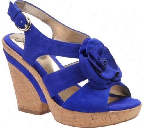 Sofft Odelle (women's) - Ink Blue Suede