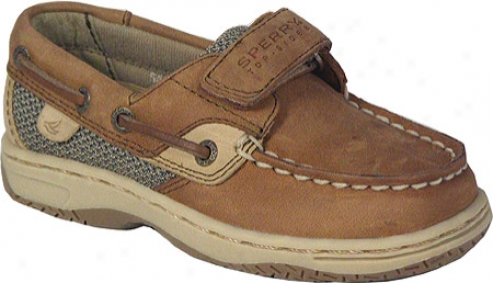 Sperry Top-sider Buefish H&l (infant Boys') - Chocolate Leather