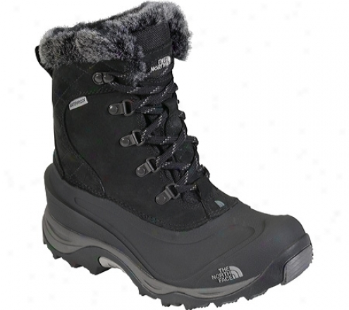 The Northerly Face Mcmurdo Ii (women's) - Black/black