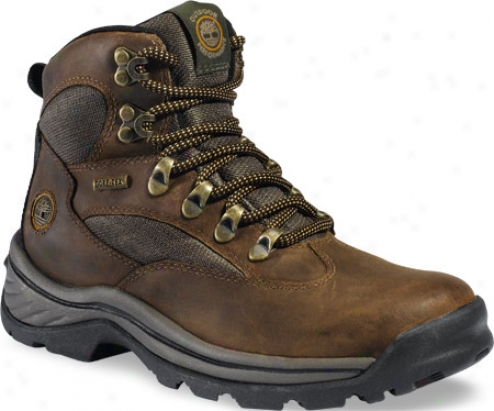 Timberland Chocorua Ttail (women's) - Brown/green