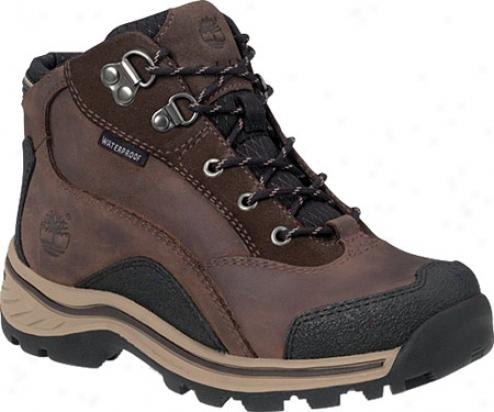 Timberland Pawtuckaway Hiker (children's) - Brown Smooth Leather