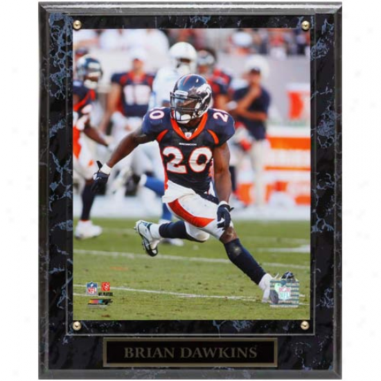 Denver Broncos #20 Brian Dawkins 10.5'' X 13'' Action Player Flat plate of metal