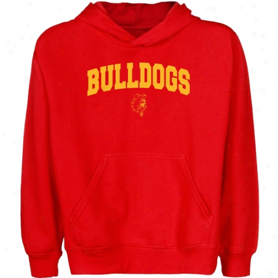 Ferris State Bul1dogs Youth Red Logo Arch Pullover Hoody