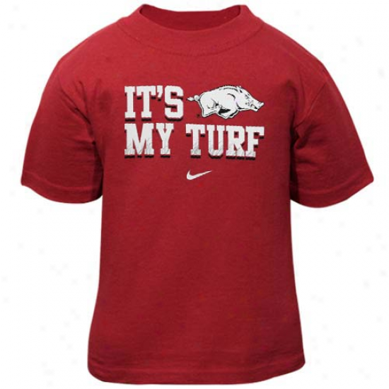 Nike Arkansas Razorbacks Infant It's My Turf T-shirt - Principal