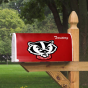 Wisconsin Badgers Logo Mailbox Cover