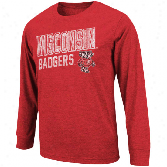 Wisconsin Badgers Youth Hedgehog Long Sleeve T-shirt - Cardinal