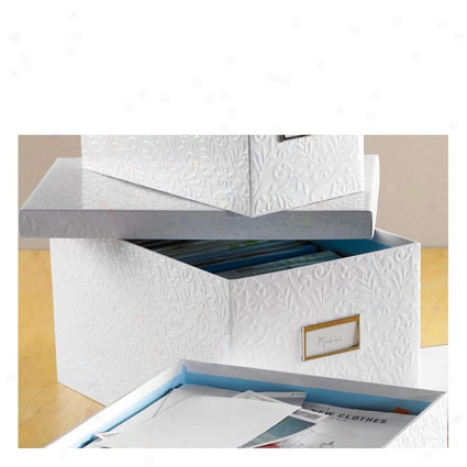 Flora Dvd Box By Design Ideas - White/blue