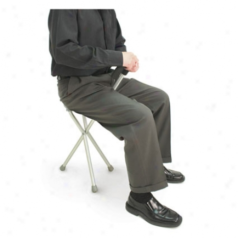 Walking Seat & Cane In One - Gray Aluminum
