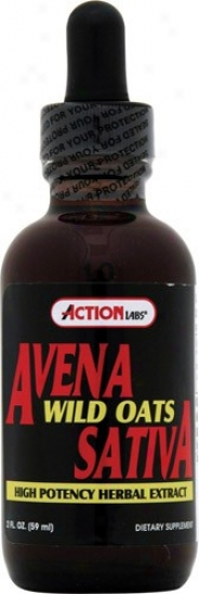 Action Labs Avena Sativa (Fanciful Oats) 2oz