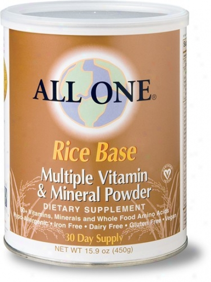 All-1's Rice Base Powder 15.9oz