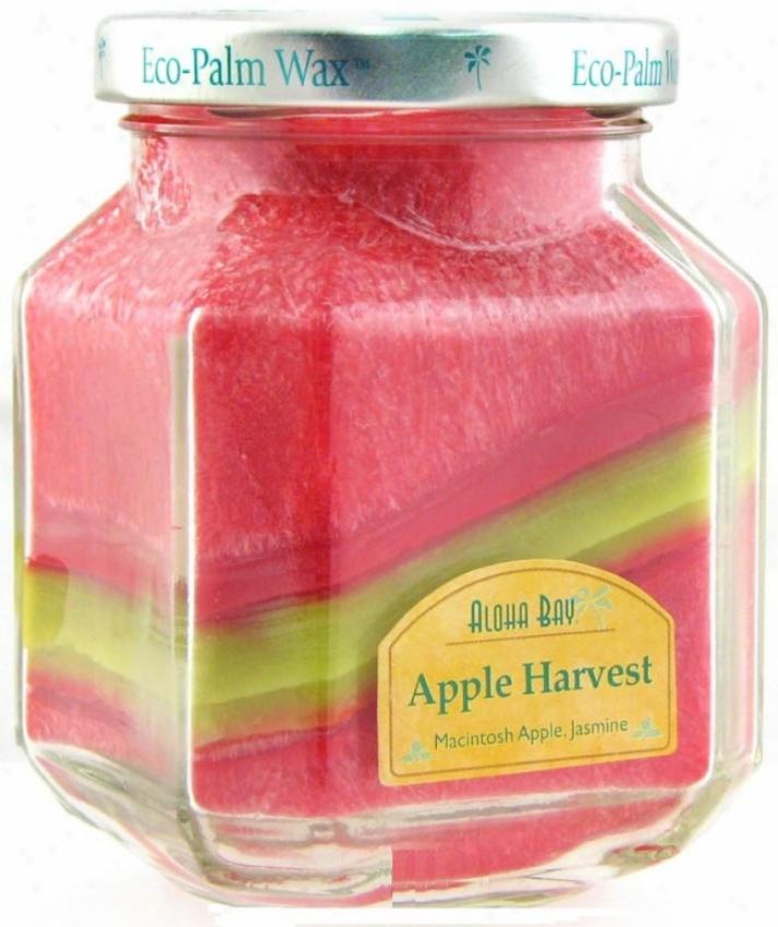 Aloha Bay's Candle Deco Jar Scented Apple Harvest 8.5oz