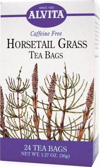 Alvita Tea's Horsetail Grass Tea 24bags